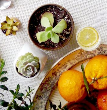 Spring into Hygge—for (Almost!) Free